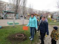 Посадите дерево - оно будет расти вместе с нашими детьми!