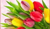 Поздравление сотрудниц детского сада с Международным женским днем 8 марта.
